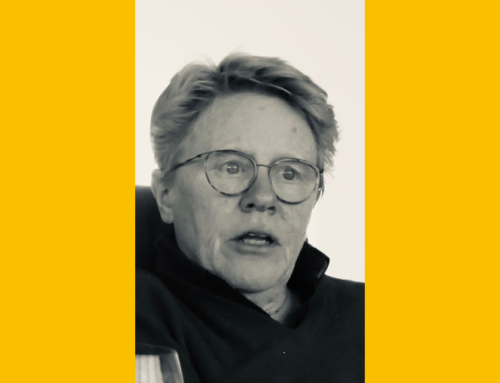 Anja Blink, nieuwe voorzitter van stichting De Verbeelding